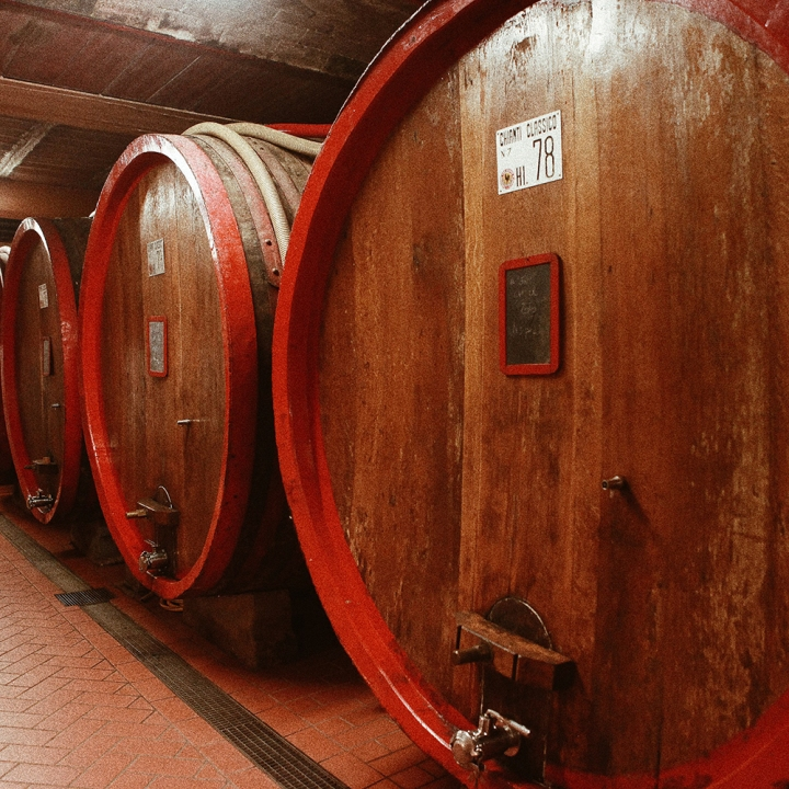 wino13