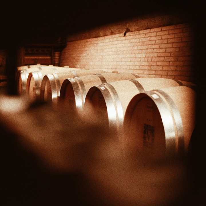 wino5